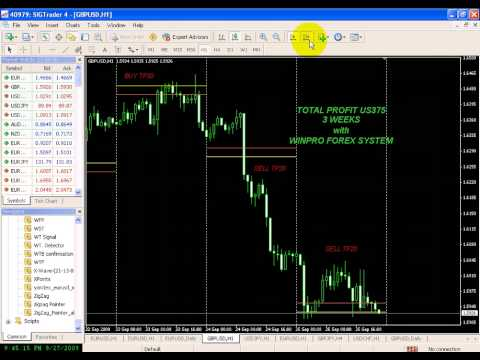 Video Preview Kursus Forex Lahad Datu