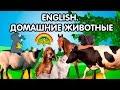 Английский для детей Домашние животные English For Children Farm Animals Развивающие мультики mp3