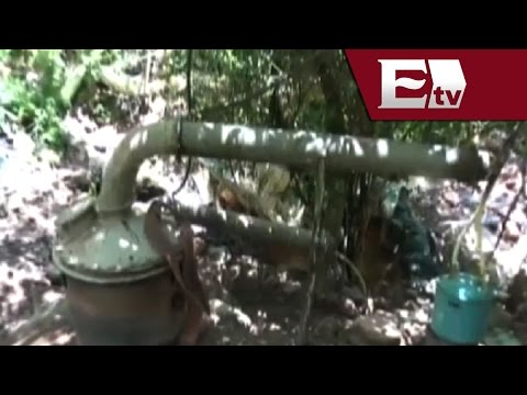 Aseguran 5 narcolaboratorios en Sinaloa y Durango  / Excélsior informa