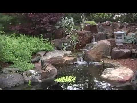 Los estanques de jardin mas maravillosos y hermosos jamás construidos!
