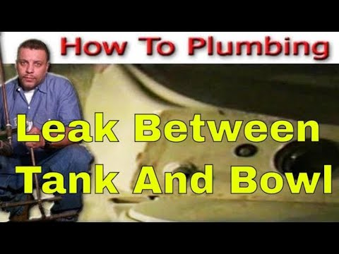Toilet repair leak between Tank and Bowl P1