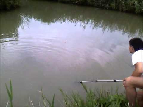 маховое удилище на реке видео