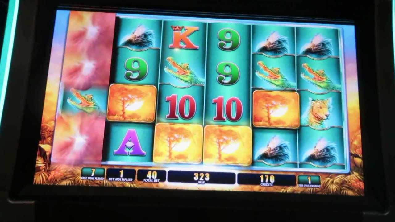youtube casino game raging rhino tattoo