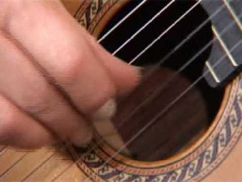 Rico Guitar-nails