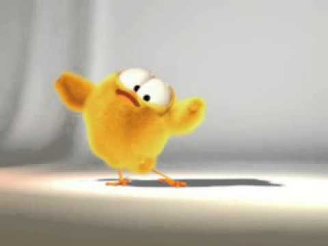 Little chicken Funny cartoon