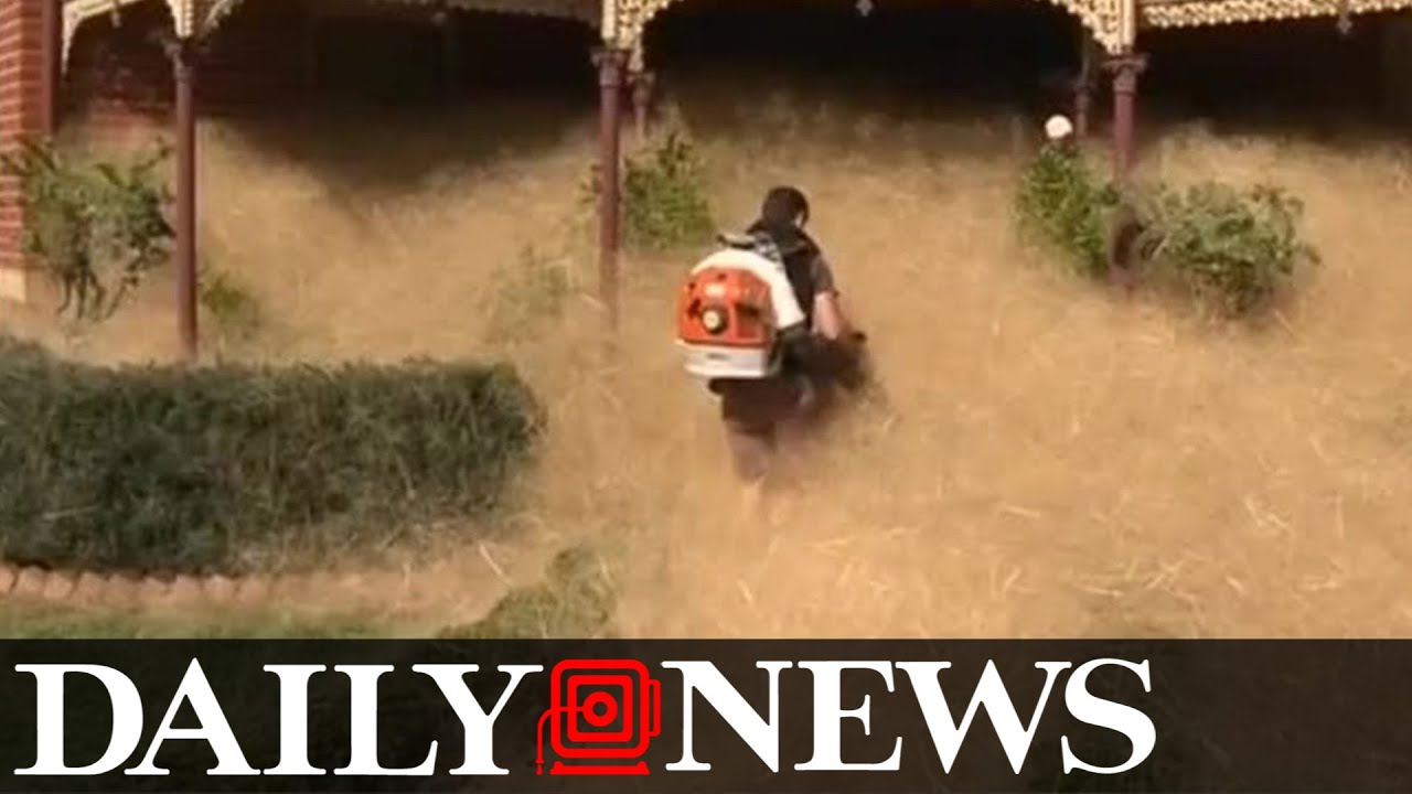 Tumbleweeds Invade Rural Australian Town