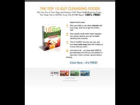 Good Bacteria in Food: Free Report