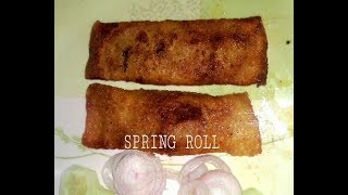 Spring roll recipe / how to make spring rolls at home / easy spring roll recipe cmi's kitchen |