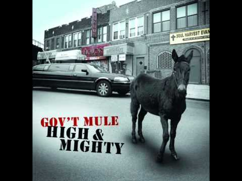 Govt Mule - Endless Parade