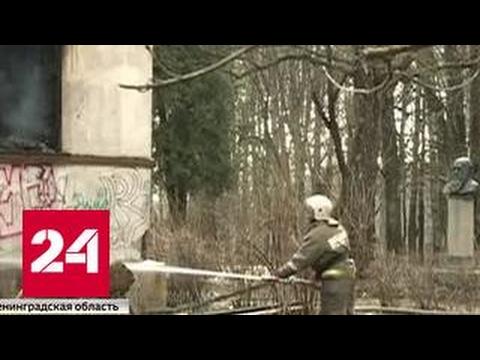 Под Петербургом сгорел дом академика Павлова