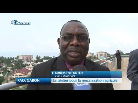 FAO/GABON : Un atelier pour la mécanisation agricole