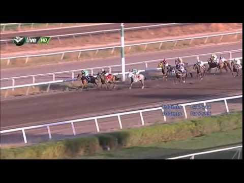 Vidéo de la course PMU PREMIO JANTO H.