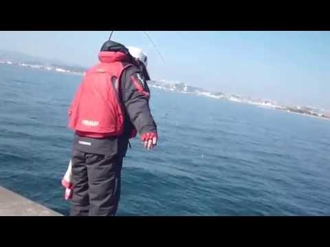 鹿児島釣行