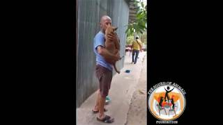 Rescuing Sweety From Dog Slaughterhouse *NON-GRAPHIC*