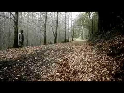 Gotye - Out Here In The Cold - official video