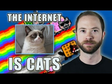 Is the Internet Cats? | Idea Channel | PBS Digital Studios