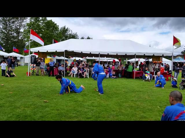 Vovinam Salem Oregon World Beat Festival 2014