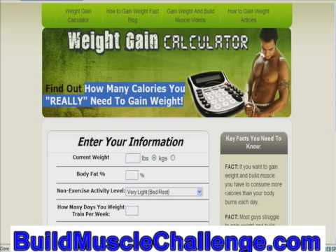 Muscle Building Diet Video | Reveals Your