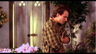 Download Bed of Roses (1996) Trailer 3Gp Mp4