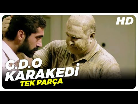 G.D.O Karakedi - Türk Filmi