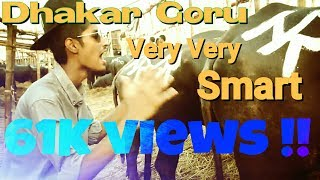 Dhakar Goru Very Very SMART | Bhallagse LTD | Eid Song | 2016