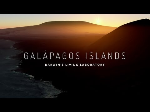 Explore the Galapagos Islands with Google Maps