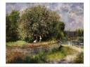 view Der Narrische Kastanienbaum