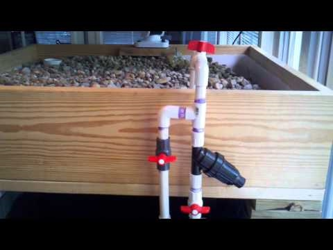 Cheap Aquaponics Indoor Setup