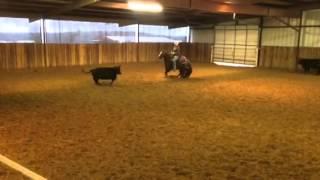 Krunch- Jared Lesh cowhorses