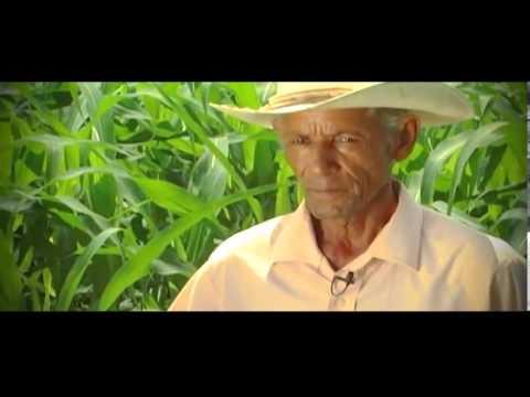 Monsanto Resumen vision 2020