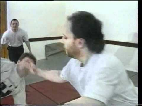 Tai Chi San Shou - multiple attackers Image 1