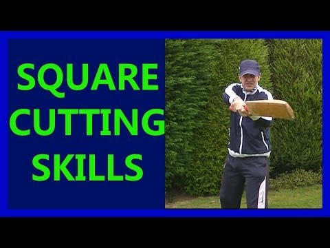 Hd Cricket Video How To Play Cricket Square Cut Shots Tutorial Tips Pt2 Left video