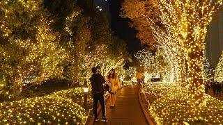 TOKYO?Christmas Lights?Shinjuku Station. [Terrace City and Minami Lumi] 2018. #4k?#???????
