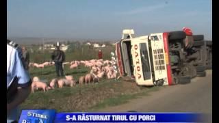 01  tir incarcat cu porci,rasturnat la salcea Bucovina TV_ro - 25-04-2113