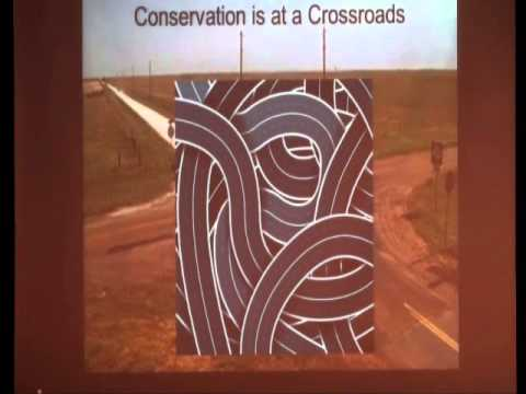 Conservation in a Changing World  Do We Need a New Paradig clip20