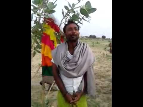 Rajasthani Jokes video