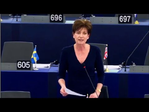 Where's the value in the millions granted to Nigeria for human rights? - Diane James MEP