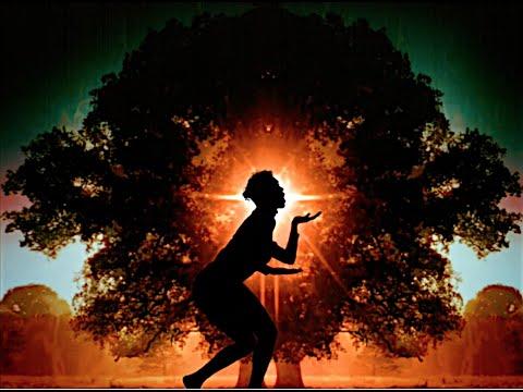 "Arling & Cameron ft. Nina Hagen - ""Eve"""
