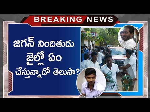 Latest Twist in YS Jagan Attack Issue | CIT Investigation is Closed | Tollywood Nagar