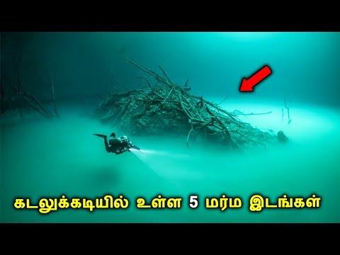 கடலுக்கடியில் உள்ள 5 மர்ம இடங்கள் | 5 Mysterious Underwater Places in the World | TAMIL ONE