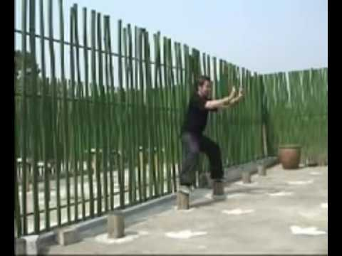 Hung Gar Training in Hong Kong Image 1