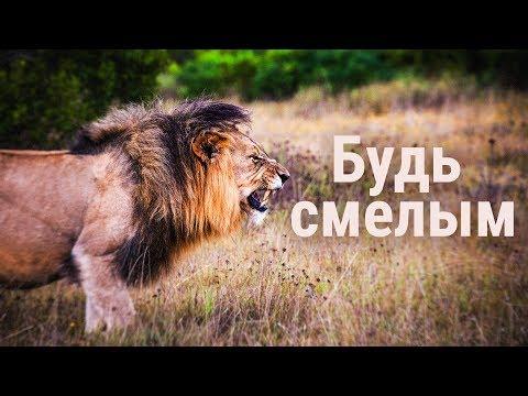 Имей смелость... - Мотивационное видео (Мотивация Х)
