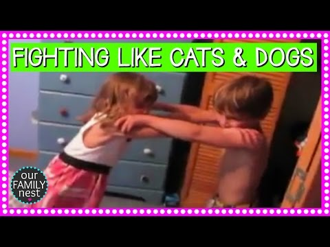 THEY HAVE ALWAYS FOUGHT LIKE CATS & DOGS | THROWBACK THURSDAY (2010)