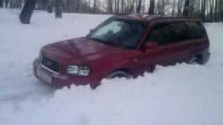 forester in snow