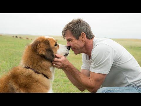 Собачья жизнь / A Dog's Purpose (2017) Дублированный трейлер HD