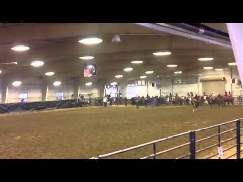 Aften Peterson & Fancy 2014 Big Piney High School Rodeo