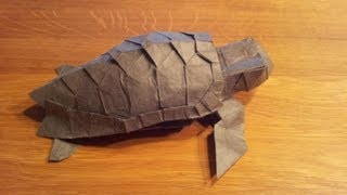 Origami Loggerhead Sea Turtle (refold)