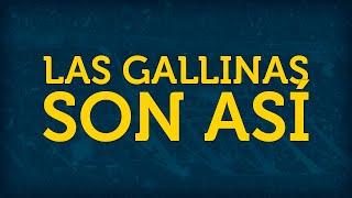 LAS GALLINAS SON ASÍ ► con letra