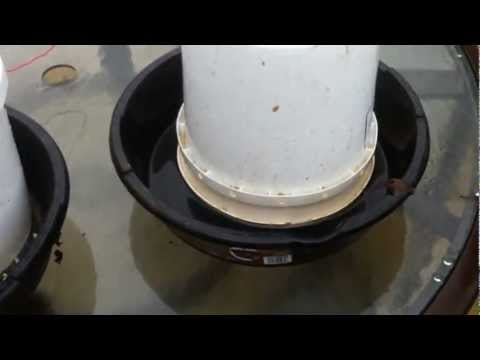 Diy Chicken Feeder And Waterer Youtube