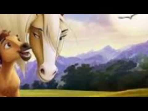 Spirit Stallion video